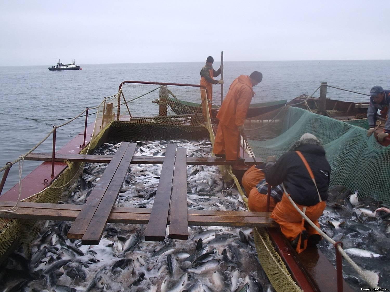 рыбак прибрежного лова зарплата