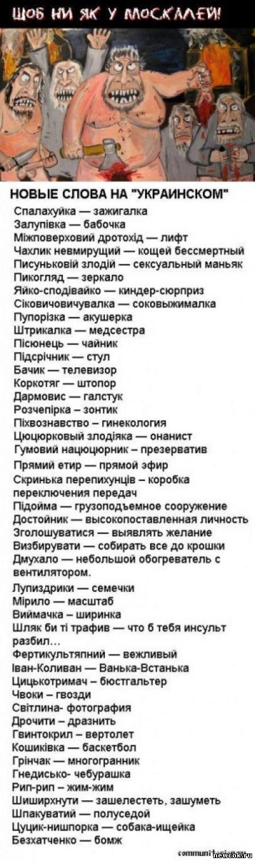 http://newcok.3dn.ru/_fr/26/7351466.jpg